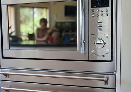 Danville Microwave Repair